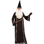 Wizard Hat and Robe - Costume