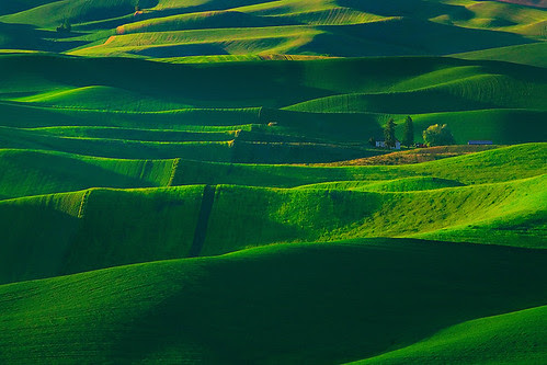 Palouse In The Spring por kevin mcneal