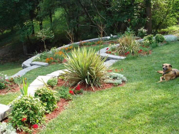 Back Yard Hill Landscaping Idea