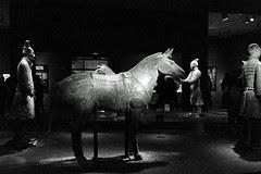 Terracotta Warriors - Cavalry Horse