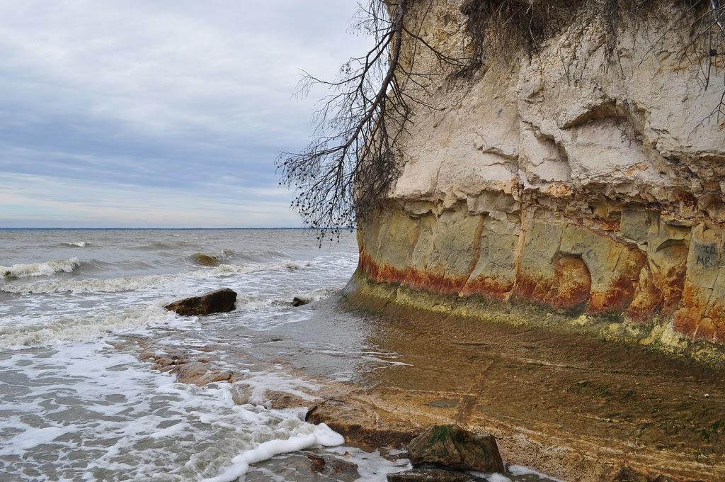 Fossil Beach Cliffs 3