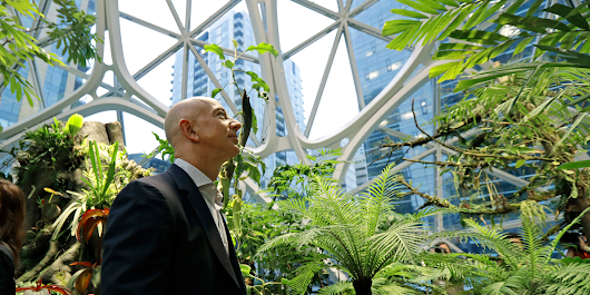Amazon just revealed its new Spheres building, which features a mini tropical forest — here's what it looks like inside