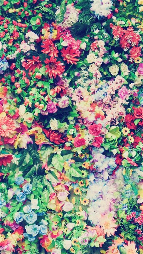 floral iphone   wallpapers   sunny spring