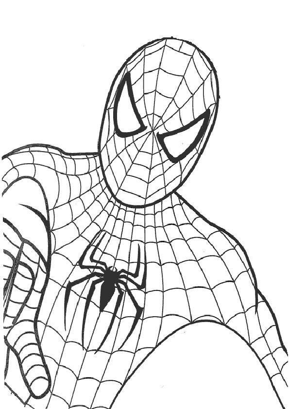 ausmalbilder drucken spiderman  kinder zeichnen und ausmalen