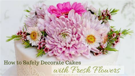 Safely Decorating Cakes with Fresh Flowers   Shani's Sweet Art