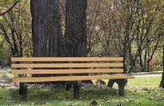 Engineered Plastic Systems TSB8 Trail 8ft Side Bench in Ceder