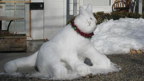 snow kitty 2009 002
