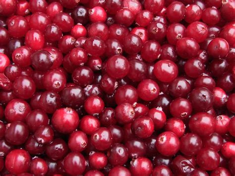 Picture Cherry Food Fruit