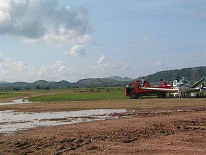 Busuanga airstrip is on the largest cattle ran...