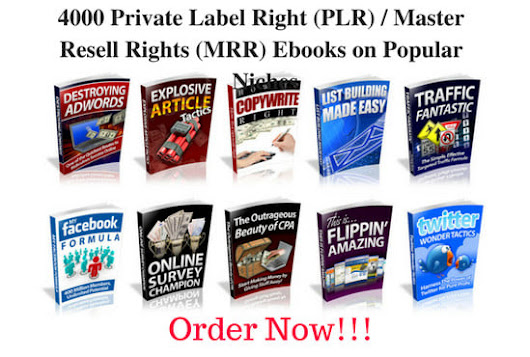 wordrevival : I will give you 4000 plr ebooks on over 500 niches for $10 on www.fiverr.com