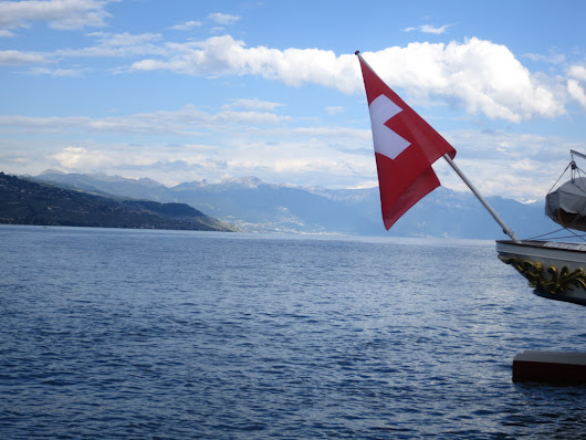 Swiss Pet Laws - Swiss National Day | Meow Lifestyle