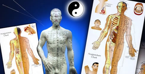 Energy Pathways of Chinese Medicine | Santa Rosa Acupuncture & Integrative Medicine | Janet Barrows