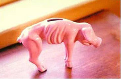 My Piggy Bank