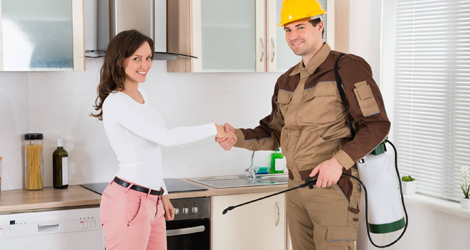 Professional Pest Control Vs. Do It Yourself Pest Control