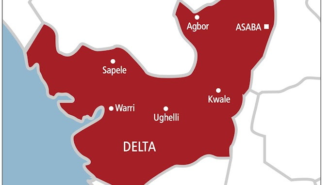We were offered N2m to assassinate Delta State politician —suspect