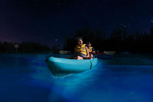 Bioluminescent Kayaking: A Unique Adventure