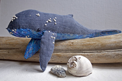 humpback whale no. 6