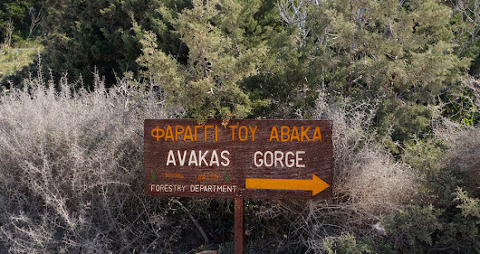 Hiking Avakas Gorge, feel like a kid again. | MY INSPIRATION