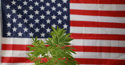 Timeline for Marijuana Legalization in the United States: How the Dominoes Are Falling -- The Motley Fool