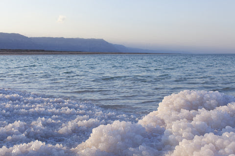Dead Sea salt benefits for pets