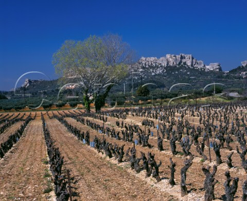 The history, wines and oils of Les Baux de Provence