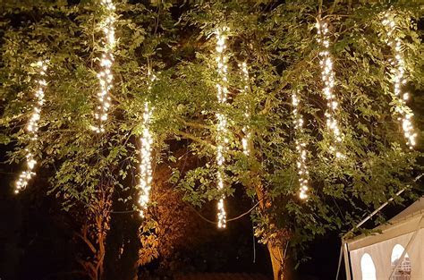 Hanging Lights From Trees Wedding