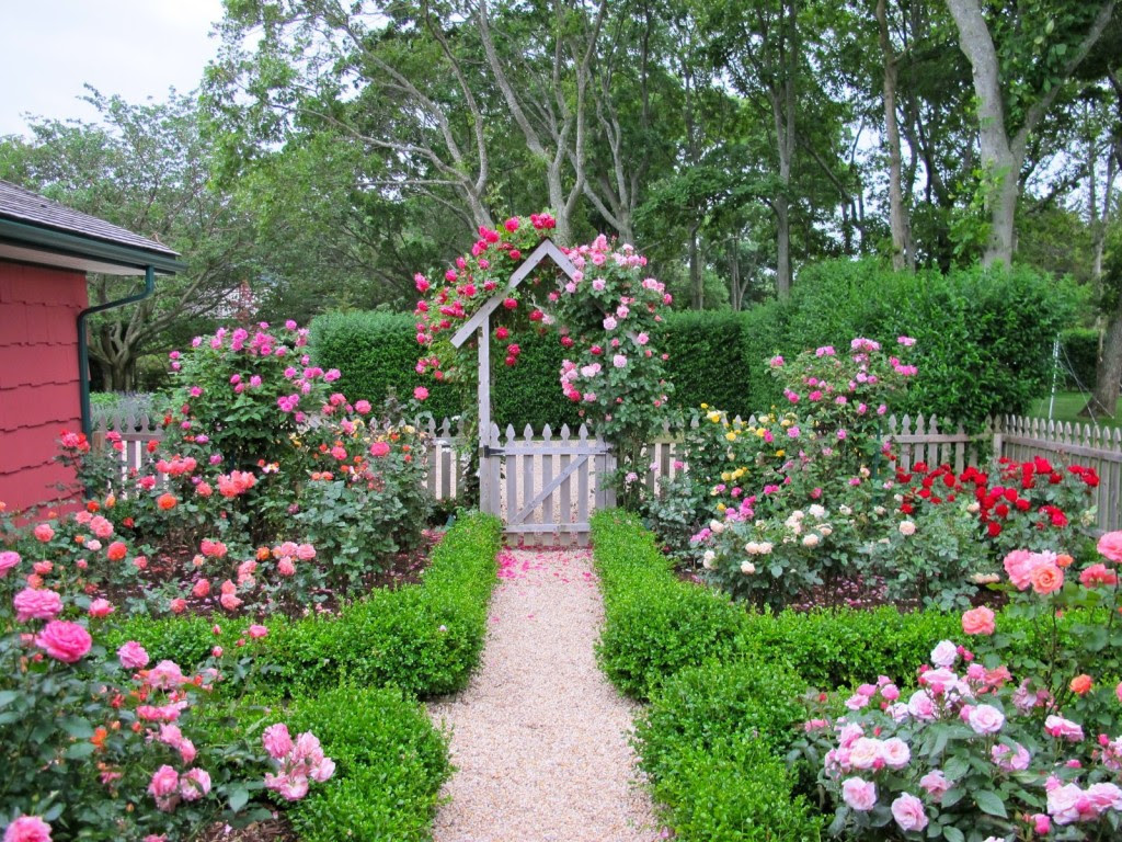 Cottage garden design with roses 1024x768
