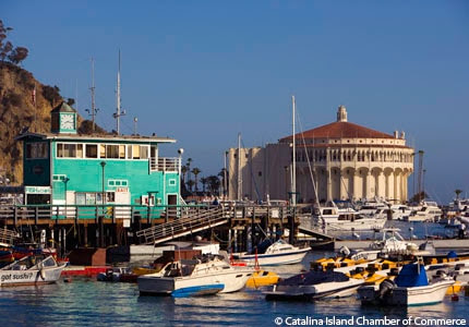Best - Top 10 Things to Do on Catalina Island | Gayot