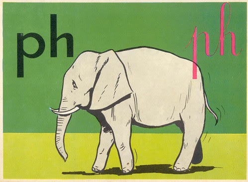 ph éléphant