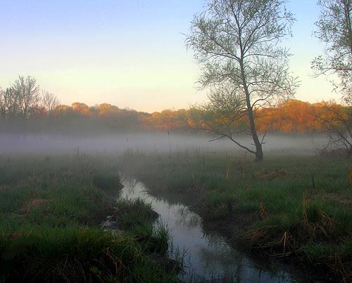 Purgatory Creek