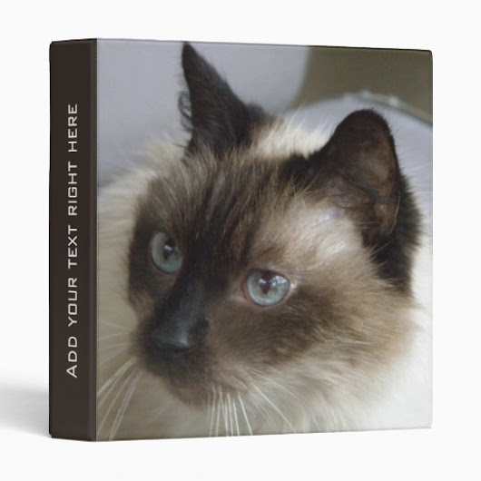 Customizable Siamese Kitty BInder