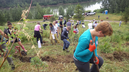 Let's Expand Edmonton's 1st River Valley Food Forest! (4th Annual Planting)
