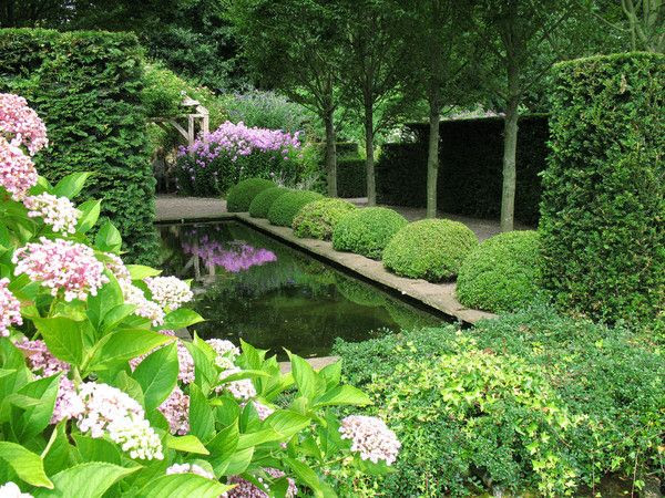 Pond, topiary and hydrangeas