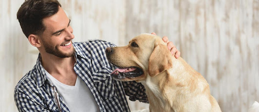 How Pets Can Enhance a Lifestyle of Sobriety | Eudaimonia Sober Living