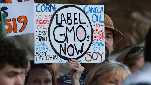 What consumers want in GM food labeling is simpler than you think | NewBostonPost