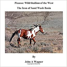 Picasso Wild Stallion Of The West The Icon Of Sand Wash Basin