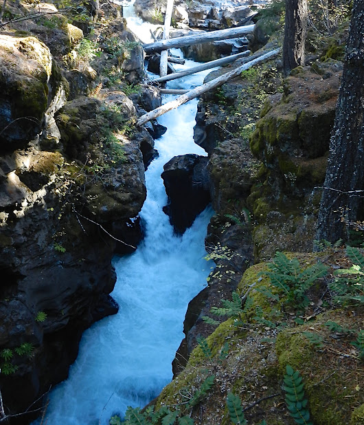 Waterfalls You Can't Miss in S. Oregon