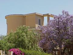 Avram Villa, Asmara