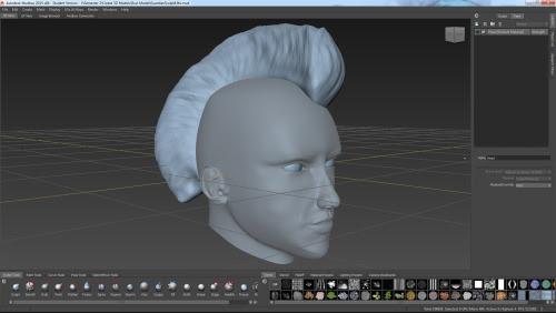 CG: [CORTEKS] • Got my head model into mudbox and did a whole lot...