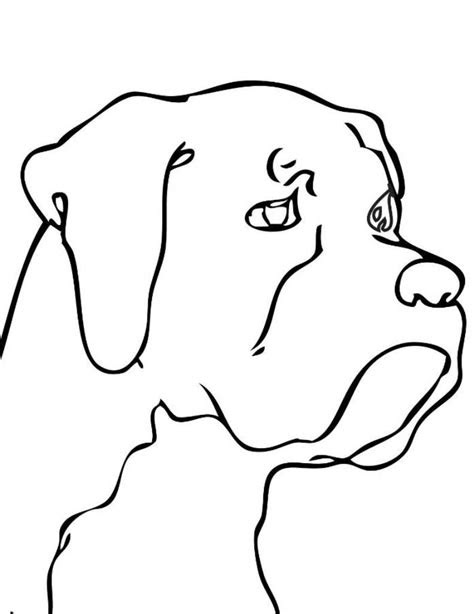 horse head coloring pages clipart