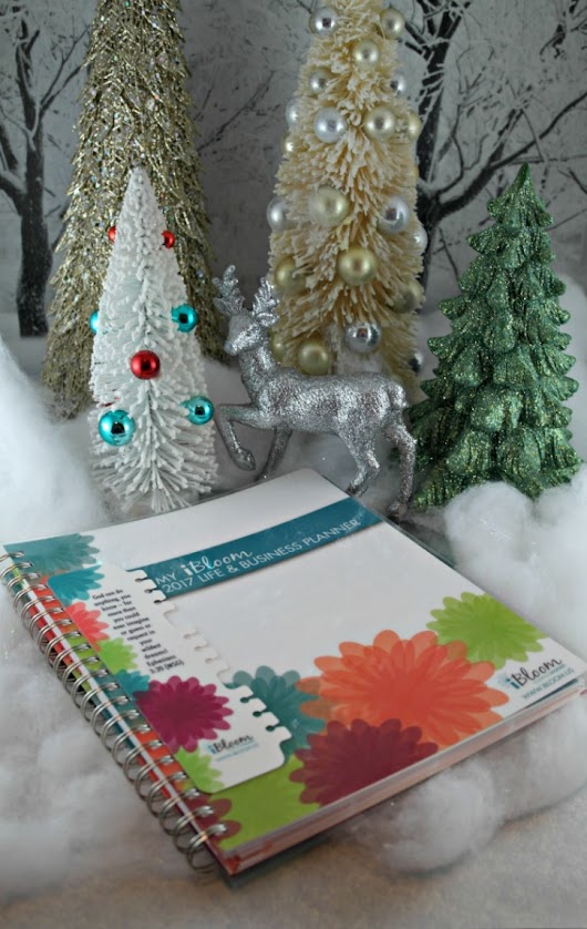 What's You're Planner Style the iBloom Planner - Beautiful Touches