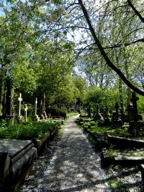 Highgate Cemetery_1