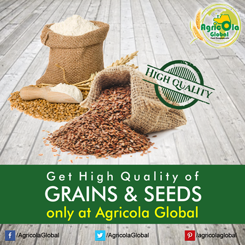 Agricolaglobal-The Best Online Platform for All Rice Suppliers, distributor and buyers