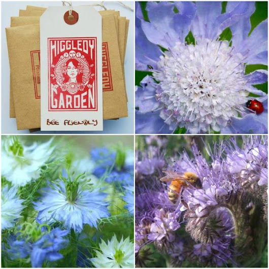 Bee & Butterfly Friendly Seed Collection for 2016