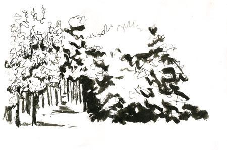 woodlandparkinrain