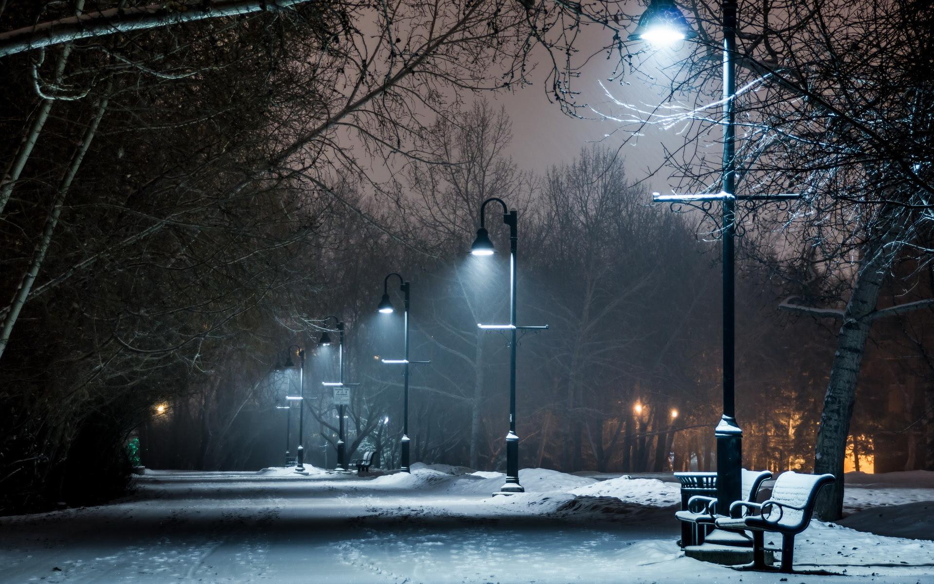 Winter Snow Bench Lights Wallpaper 1920x1200 22105