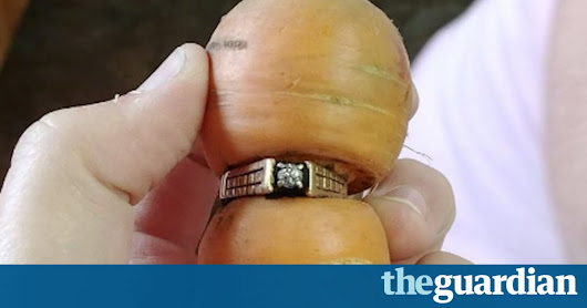 Canadian woman, 84, finds long-lost diamond ring wrapped around carrot | World news | The Guardian