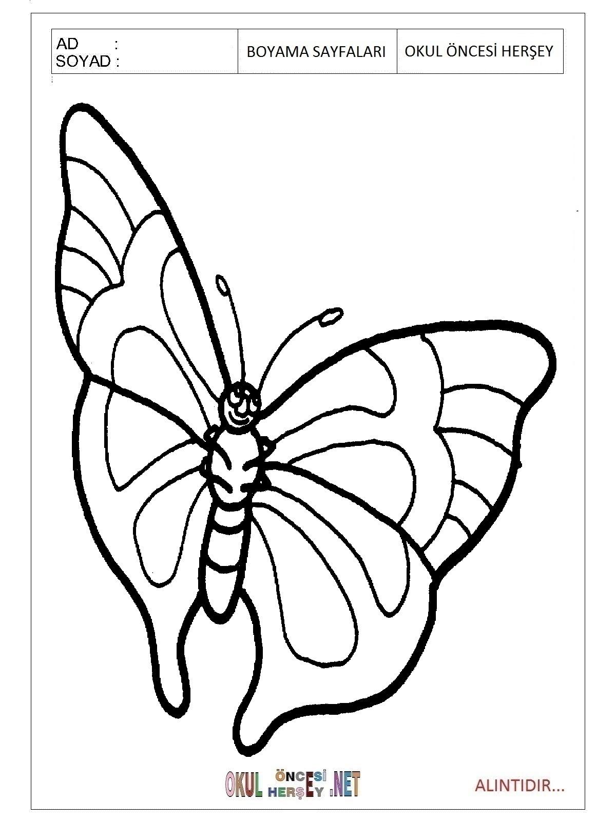 Kelebek Boyama Sayfaları