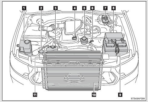 1999 Toyota Tacoma Engine Diagram Wiring Diagram Book Jest More Jest More Prolocoisoletremiti It