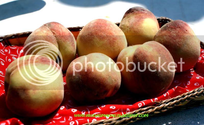 Pêssegos-rosa do Mucifal/Sintra